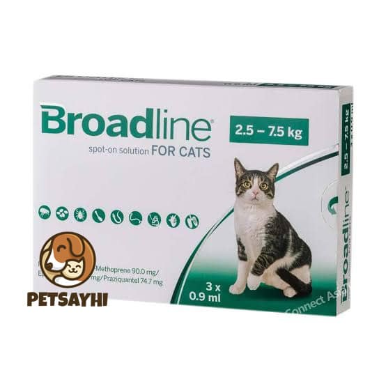 ยากำจัดเห็บหมัดแมว ยี่ห้อยอดนิยม